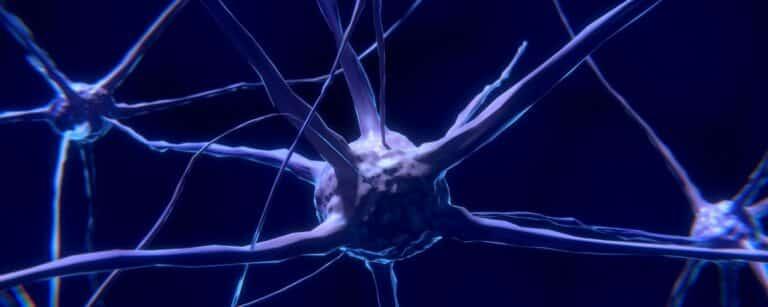 Overbelast zenuwstelsel bij burn-out – Hoe kom je weer tot rust?