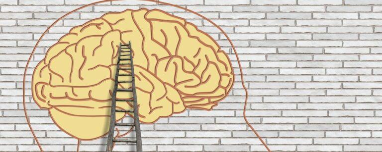 Hypothalamus en stress: de invloed van stress op het autonome zenuwstelsel