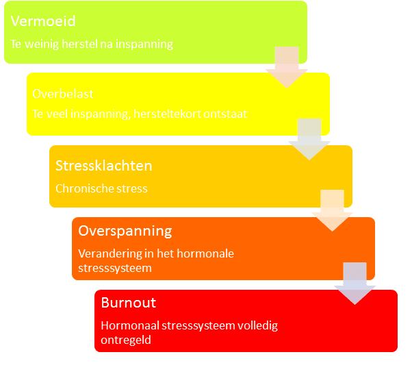 Medewerker overbelast, overspannen of burnout?